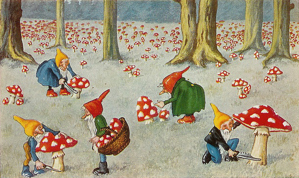 Elves live in mushrooms and animate the world